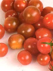 Image of Cherry Tomatoes
